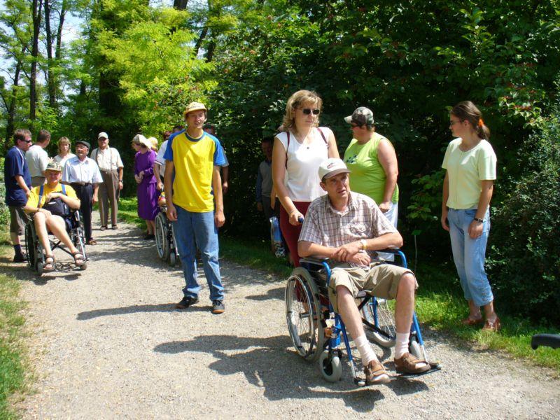 Więcej o: Wycieczka do Arboretum w Bolestraszycach