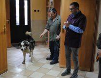 Więcej o: Dbamy o naszych czworonożnych pupili – z wizytą w lecznicy dla zwierząt